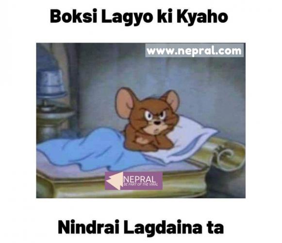 Bokshi Lagyo Ki Kyaho - Funny Tom and Jerry Memes